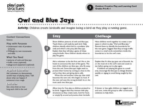 Owl and Blue Jays